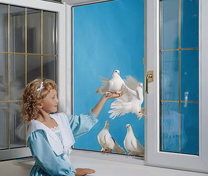 Самые популярные вопросы и ответы о пластиковых окнах