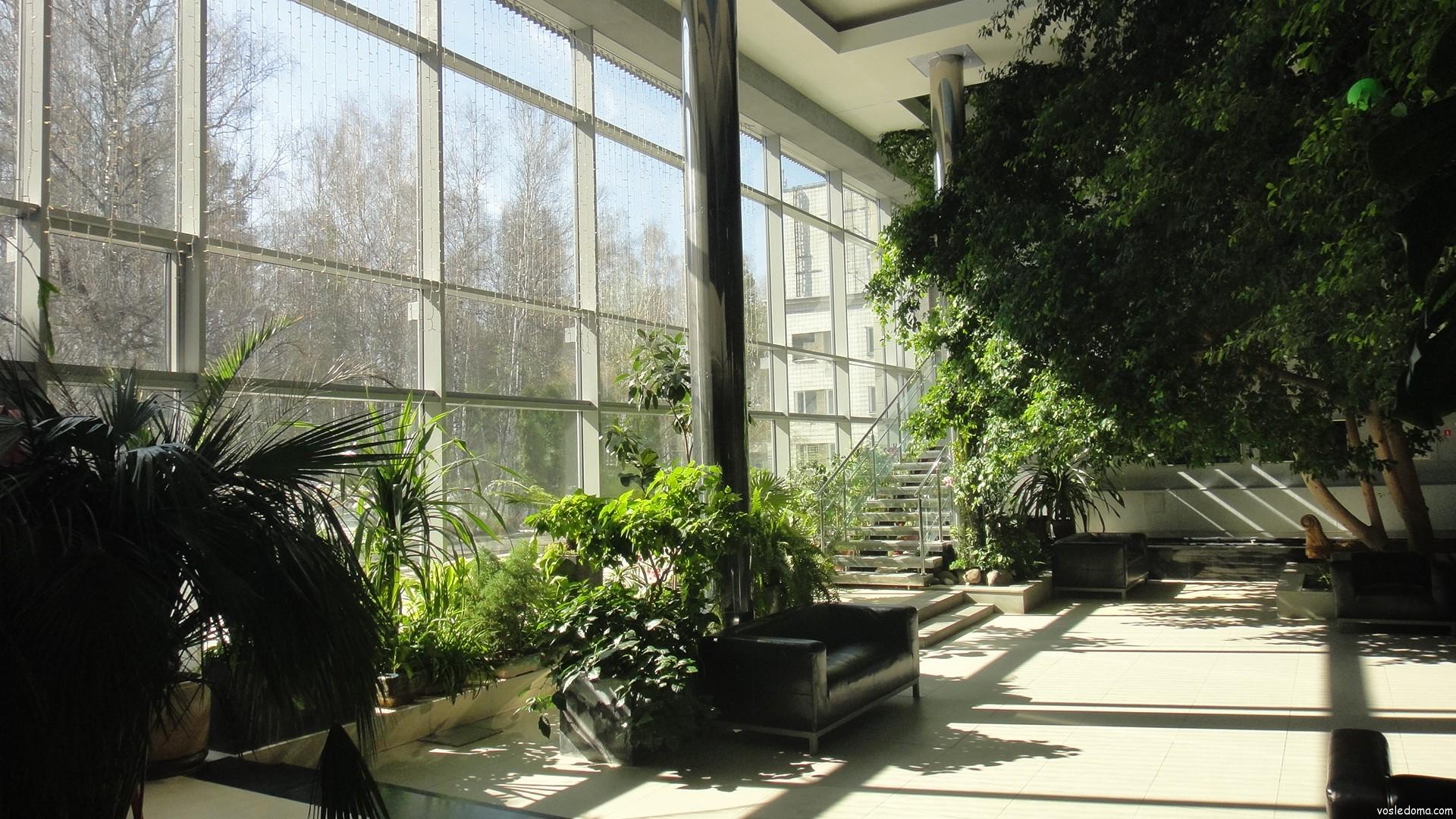 236 Зимний сад